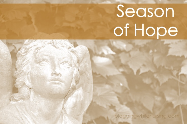 A Season Of Hope: Preparing Our Hearts and Homes